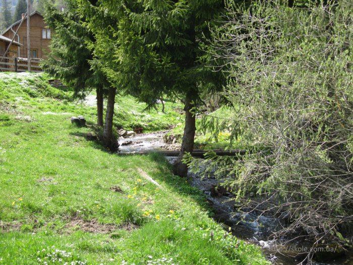 Потік Пшонецький біля північного схилу гори Тростян