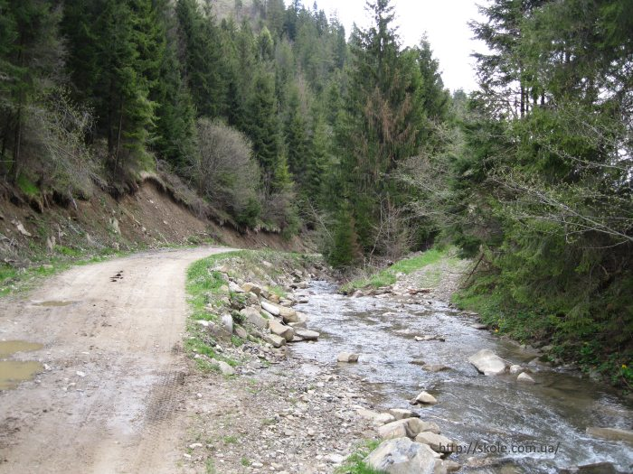 Поток Пшанецкий